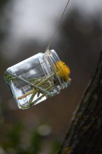 Fliegende Vasen