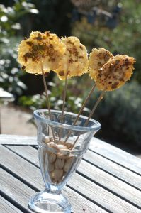 Parmesan Lolly
