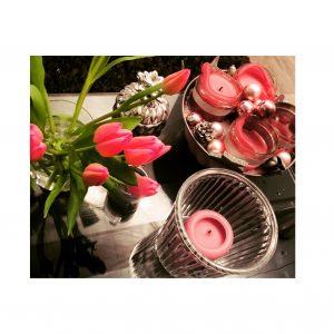 Tulpen Pflegetipps