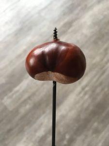 Kastanien Wurm