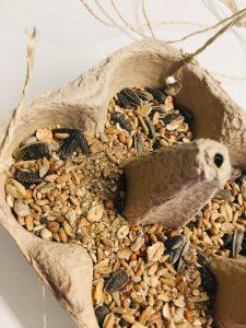 Vogelfutterschale aus Eierkarton