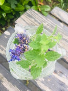 Lavendel Eiswürfel