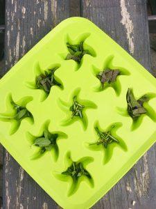 Gefrorene Olivenöl-Kräuter-Eiswürfel