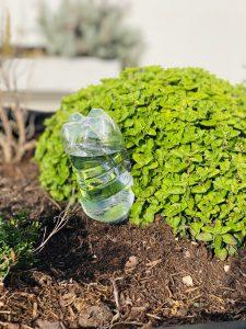 DIY Selbstbewässerung Hochbeet